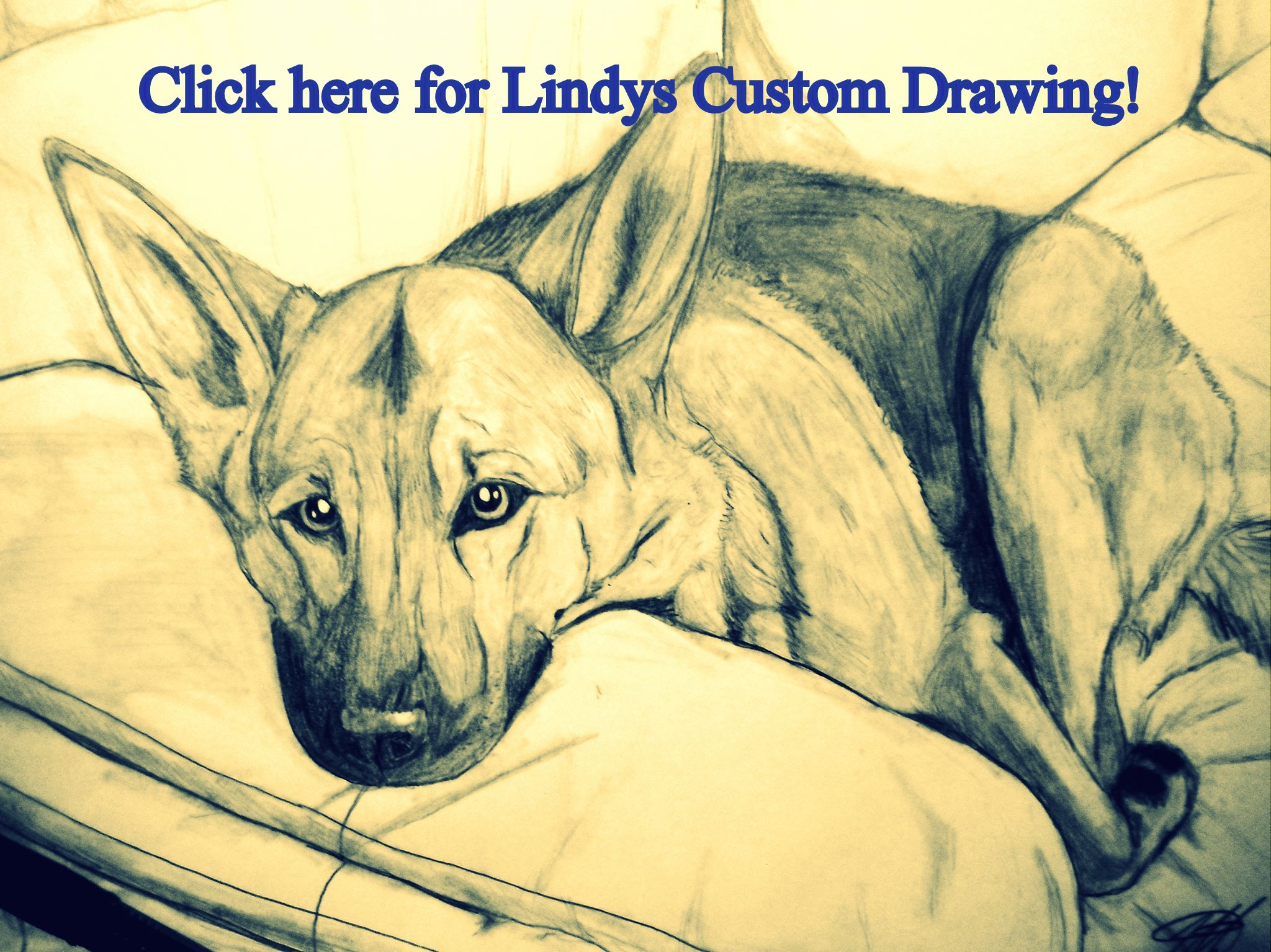 Lindy's Custom Drawings